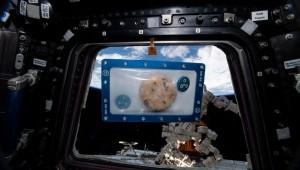 Ve Kurabiyeler Uzayda: Ünlü DoubleTree Kurabiyeleri Uzayda Pişecek İlk Yiyecek Olmak Üzere Uluslararası Uzay İstasyonu'na fırlatıldı