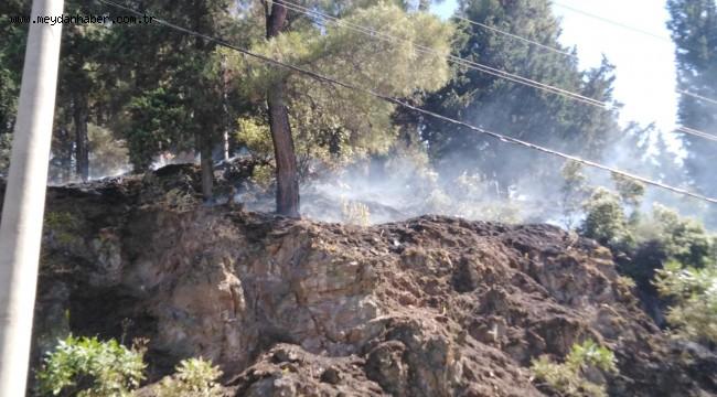 Büyükşehir İtfaiye'den Spil Dağı Yangınına Önemli Müdahale