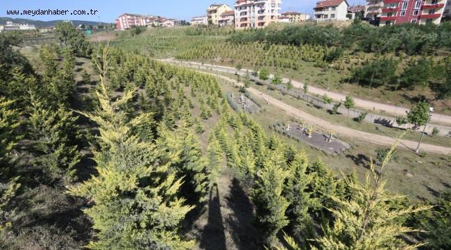 Büyükşehir'den park ve bahçelere 38 milyonluk yatırım