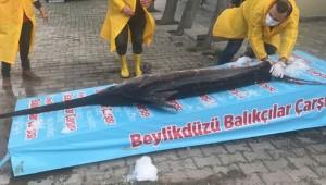 Marmara Denizi'nde 3 metrelik kılıç balığı yakalandı!